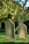 05_23_51---Graveyard_web