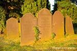 05_23_12---Graveyard_web